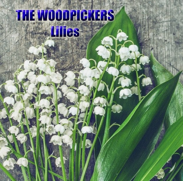 lilies-cover.jpg